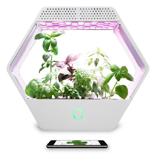 An exagonal grow box called Linfa with LEDs and various plants living inside it